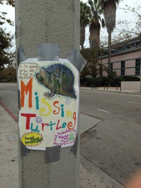 Missing turtle sign in Venice Beach